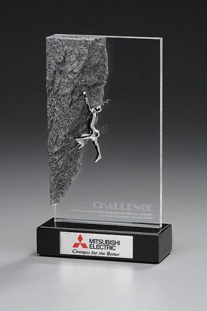 Challenge Award 7871