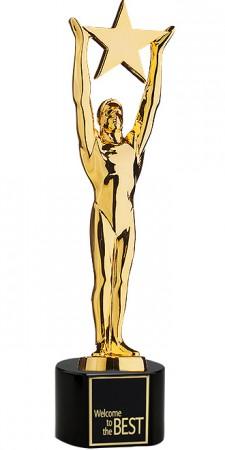 Star Achievement Award vergoldet 78810