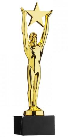 Star Achievment Award goldfarbig 78814