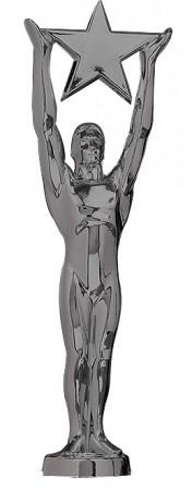 Star Achievment Award schwarz 78818
