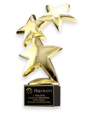 Constellation Award 78844